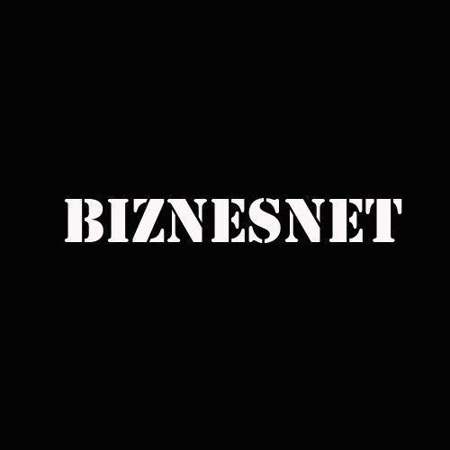 The Biznesnet international logo, copyright held by Individual Entrepreneur Pavel V. Mozgovoy. All rights reserved. Pavel Mozgovoy, 2020. The first version of the logo was created on March 16, 2020. Now everyone knows the logo's birthday;)